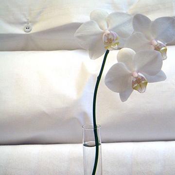 Leitgeb Textilreinigung